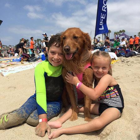 Ricochet The Surf Dog